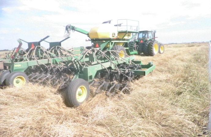 AgroActiva: Sembraron soja y maíz en el predio de la expo