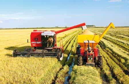 Para la FAO, la maquinaria debe evolucionar junto a la agricultura sostenible