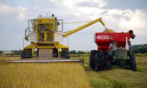 Nuevo diseño de aireación de stripper reduce pérdida de granos en cosecha