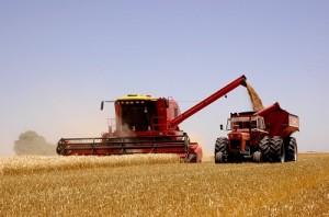 Cosechadora y tractor 2