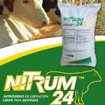 Nitrum 24
