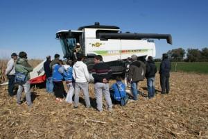 Admite agricola 3