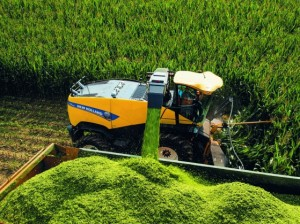 New Holland forraje