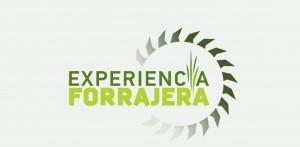 Experiencia Forrajera en Ameghino