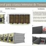 Innovar 2013 - Corral de terneros