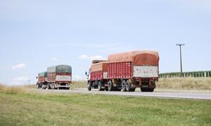 Transporte de granos