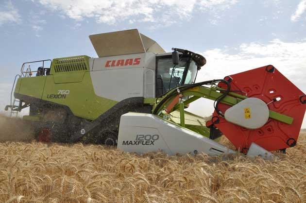 Primeras experiencias de las nuevas cosechadoras Lexion en campos argentinos