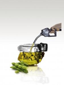 Portada Biodiesel