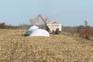 Embolsadora de granos