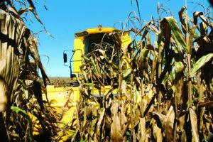 New Holland extiende hasta diciembre la promoción de la cosechadora TC5090